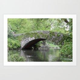Gapstow Bridge  NYC Art Print