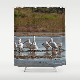 The Birds of Cutler Bay Wetlands Shower Curtain