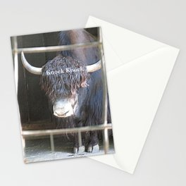 Knock Knock Door Wild Highland Bull Buffalo Gnou  Stationery Cards