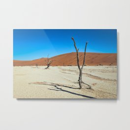 Dead Trees and Dunes Metal Print