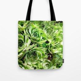 GREEN HENS N' CHICKS SEDUMS-SUCCULENTS Tote Bag