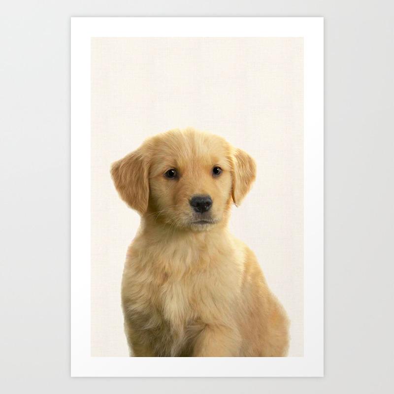 - Dog Print Dog Photography Minnimalist Nursery Art Animal Art Print