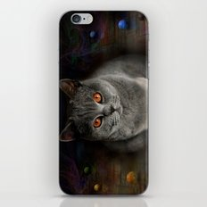 Superstarmodelcat Diesel iPhone & iPod Skin