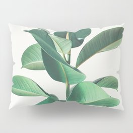 Rubber Fig Pillow Sham