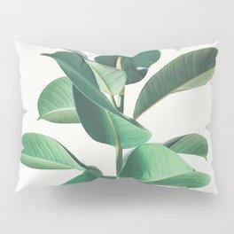 Rubber Fig Pillow Sham
