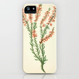 COMMON LING OR HEATH iPhone Case
