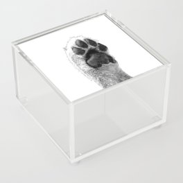 Black and White Dog Paw Acrylic Box