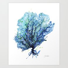 Sea Fan - Aqua Art Print