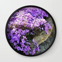Sign of the Pink Moon - Creeping Phlox Wall Clock