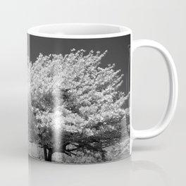 A Dogwood on the Beach Black and White Photographic Art Print Coffee Mug