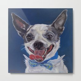 Chihuahua Dog Portrait Metal Print