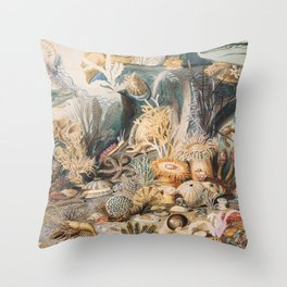 Ocean Life by James M. Sommerville Throw Pillow