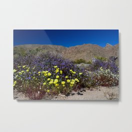 Painted Desert 7442 - Joshua_Tree_National_Park Metal Print