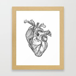 Anatomical Heart Ink Sketch Framed Art Print