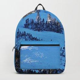 Above the Treeline, Mount Hog's Back Backpack
