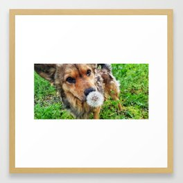 Dog and flower Framed Art Print