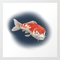 koi Art Prints featuring Koi by Ken Coleman