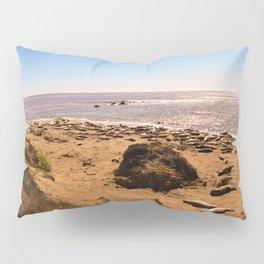 Elephant Seals on the California Coast Pillow Sham