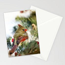 Female Cardinal Stationery Cards