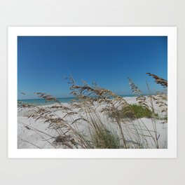 In the Dunes Art Print