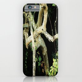 Green Perspective iPhone Case
