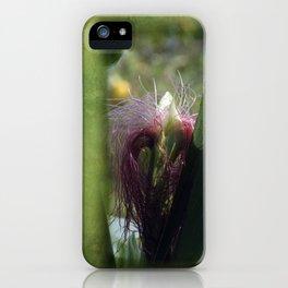 maize -3- iPhone Case