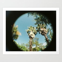 Palm Trees and Summer Breeze Art Print