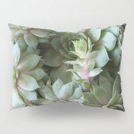 Enduring Succulent Pillow Sham