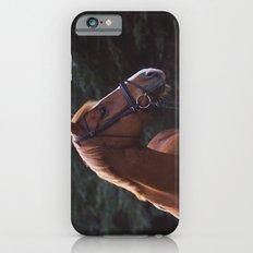 henry.  iPhone 6s Slim Case
