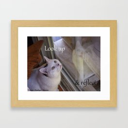 Cat Reflected: Look Up & Reflect Framed Art Print