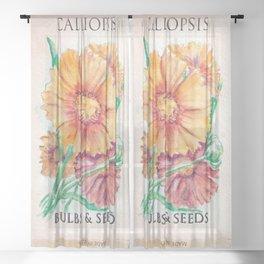 Calliopsis Seed Pack Sheer Curtain
