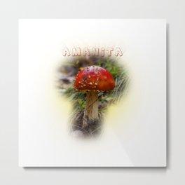 Mushroom Amanita muscaria Metal Print