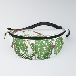 Polka Dot Begonia Potted Plant in White Fanny Pack