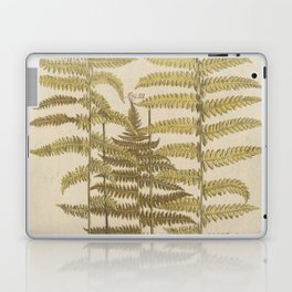 Vintage Fern Botanical Laptop & iPad Skin
