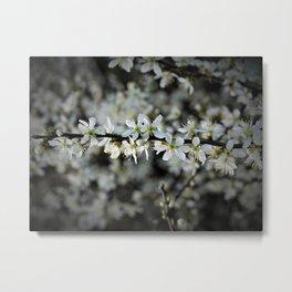 Pure Spring Metal Print