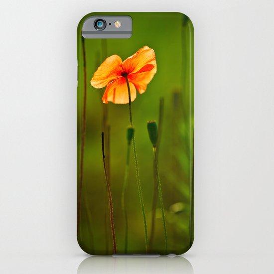 poppy iPhone & iPod Case