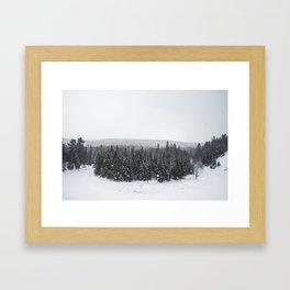 Arrowhead Framed Art Print