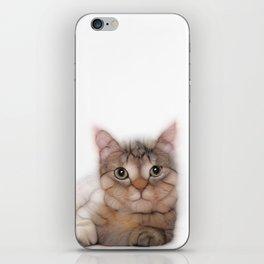 kitten cat posing for portret iPhone Skin