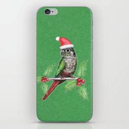 Christmas green cheeked conure iPhone Skin