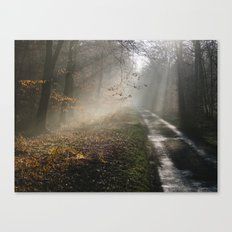 Remote country road through mist and woodland at sunset. Norfolk, UK. Canvas Print
