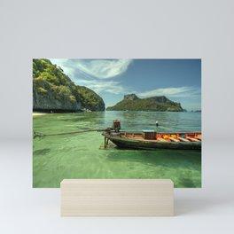 Thai Longtail  Mini Art Print