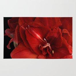Red Amaryllis Rug