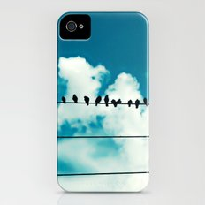 Birds Slim Case iPhone (4, 4s)