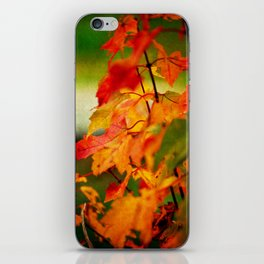 Tumble Down Fire iPhone Skin