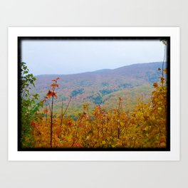 Colors in the mountain - Phone Photography Art Print
