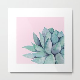 Succulent on Pink Metal Print