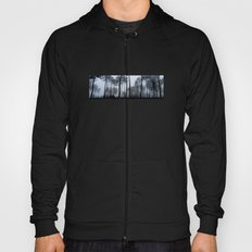 Fog and Forest III-wood,mist,romantic, greenery,sunset,dawn,Landes forest,fantasy Hoody