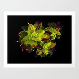 Syntrichia Art Print