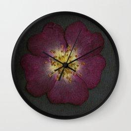 Pressed Wild Rose Wall Clock