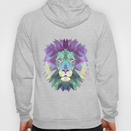Colorful Lion Hoody